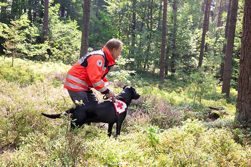 Rettungshunde_fuerth_hundefuehrer_hund_trainingsgebiet