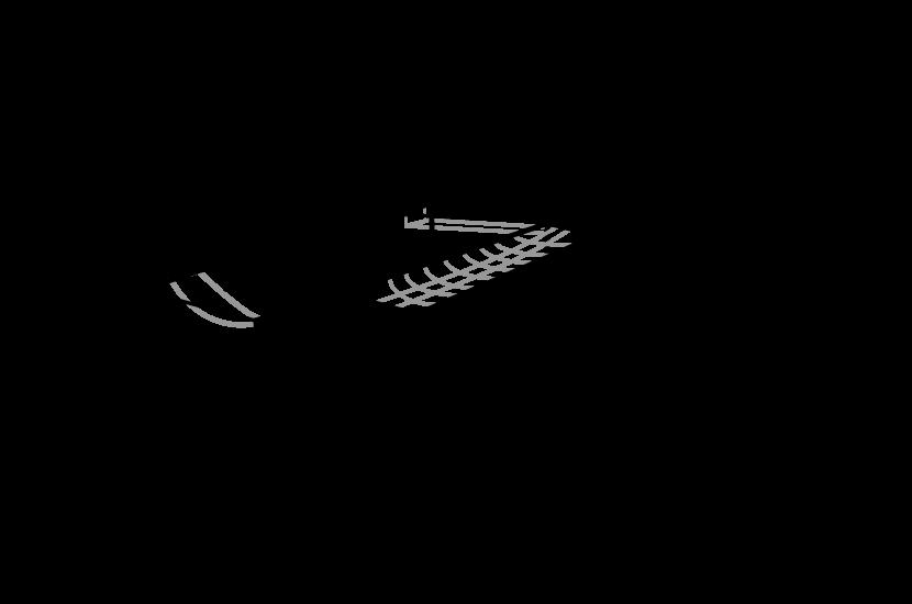 Rettungshundestaffel Geräte Illustration Gerüst